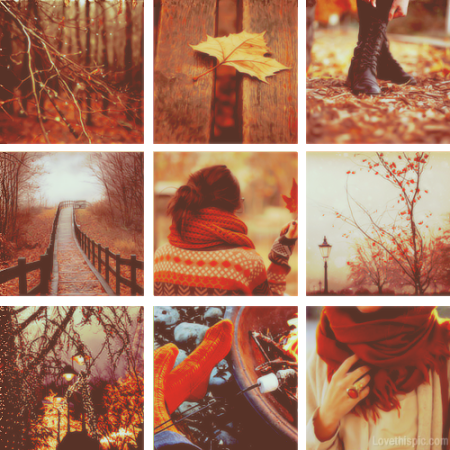 30205-Autumn-Collage